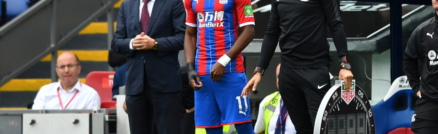 Hodgson hides extent of Palace injury crisis ahead of Gameweek 17